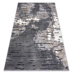 Dywan nowoczesny COZY 8876 Rio - Strukturalny, dwa poziomy runa szary